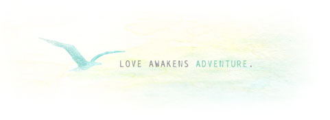 Love Awakens Adventure