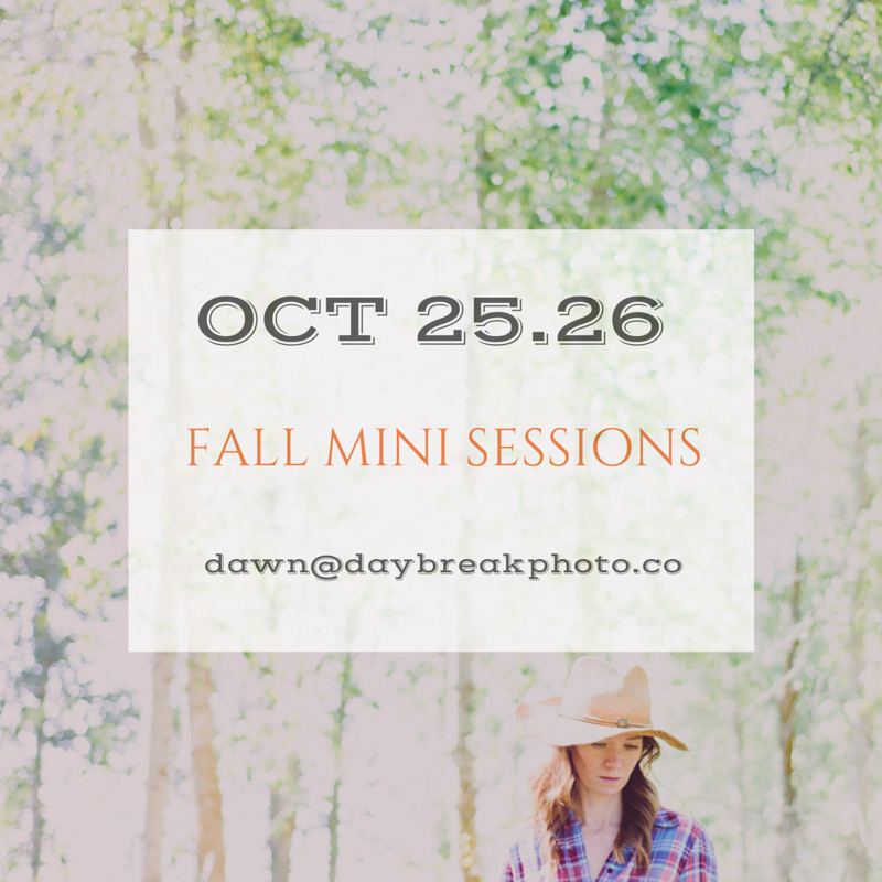 Fall Mini Sessions 2014 | St. Augustine,FL