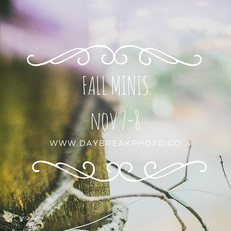 Fall Mini Sessions | St. Augustine,Florida